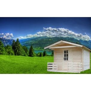 http://casutedegradina.com/93-323-thickbox/casuta-brandusa-3x3m.jpg